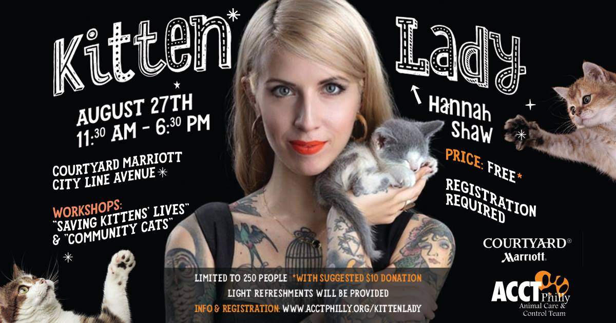 The Kitten Lady Workshop by ACCT Philly Aug 27